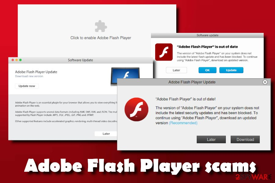 What does flash player do