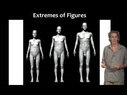 Do dwarfs have normal sized genitalia